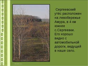 Сергеевский утёс расположен на левобережье Амура, в 4 км южнее с.Сергеевки.