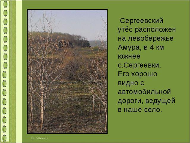 Сергеевский утёс расположен на левобережье Амура, в 4 км южнее с.Сергеевки....