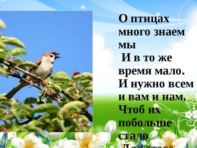 О птицах много знаем мы И в то же время мало. И нужно всем : и вам и нам, Чт...