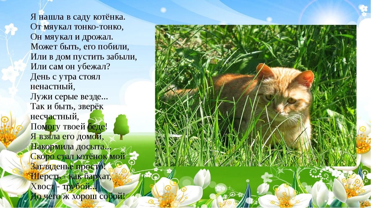 Я нашла в саду котёнка. От мяукал тонко-тонко, Он мяукал и дрожал. Может быть...