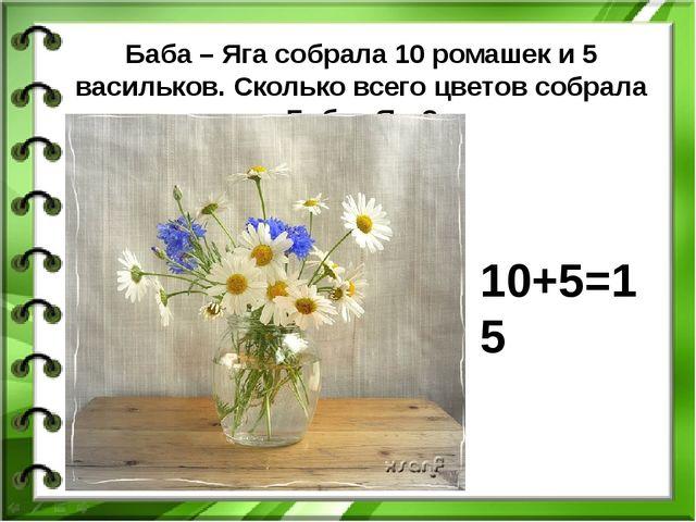 Баба – Яга собрала 10 ромашек и 5 васильков. Сколько всего цветов собрала Баб...