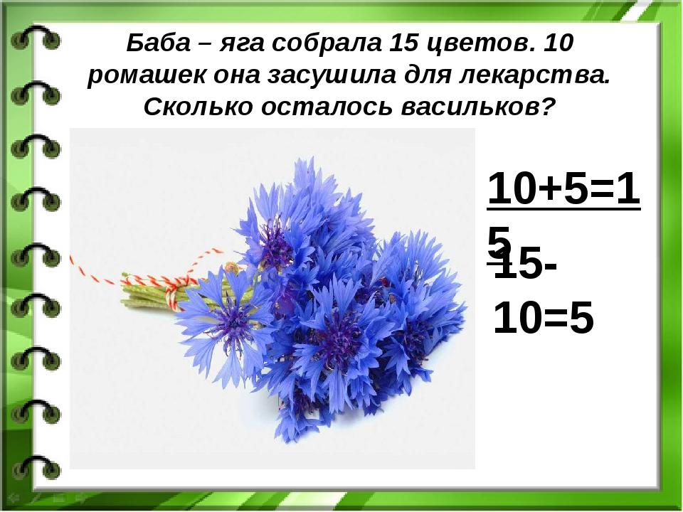 Баба – яга собрала 15 цветов. 10 ромашек она засушила для лекарства. Сколько...