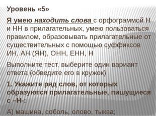 Уровень «5» Я умею находить слова с орфограммой Н и НН в прилагательных, умею