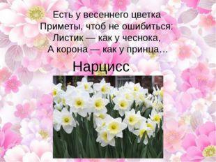 Есть у весеннего цветка Приметы, чтоб не ошибиться: Листик — как у чеснока,
