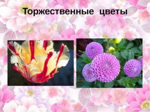 Торжественные цветы