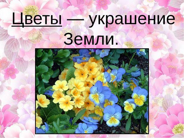 Цветы — украшение Земли.