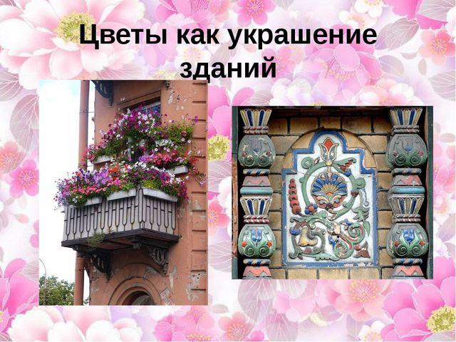 Цветы как украшение зданий