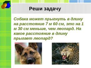 Реши задачу Собака может прыгнуть в длину на расстояние 7 м 60 см, это на 1 м
