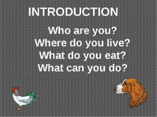 INTRODUCTION Who are you? Where do you live? What do you eat? What can you do?
