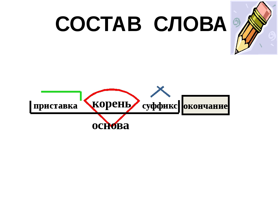 окончание основа приставка корень СОСТАВ СЛОВА суффикс