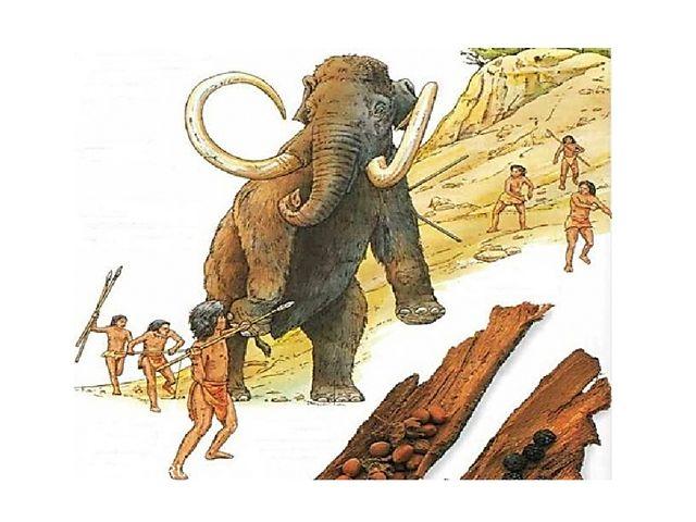 Однако можно предположить, что наши далёкие предки часто получали травмы, доб...