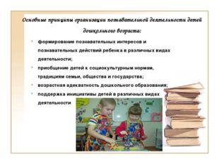 Основные принципы организации познавательной деятельности детей дошкольного в