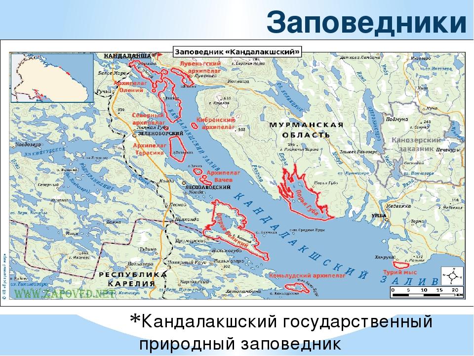 Заповедники ЕвропейскогоСевера Северного района Кандалакшский государственный...