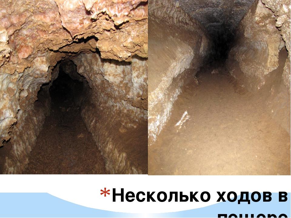 Несколько ходов в пещере