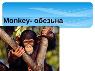 Monkey- обезьна