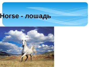 Horse - лошадь