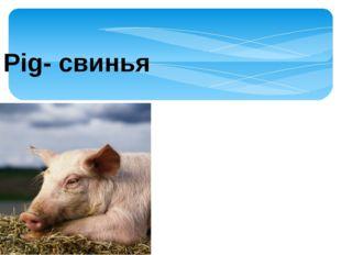 Pig- свинья