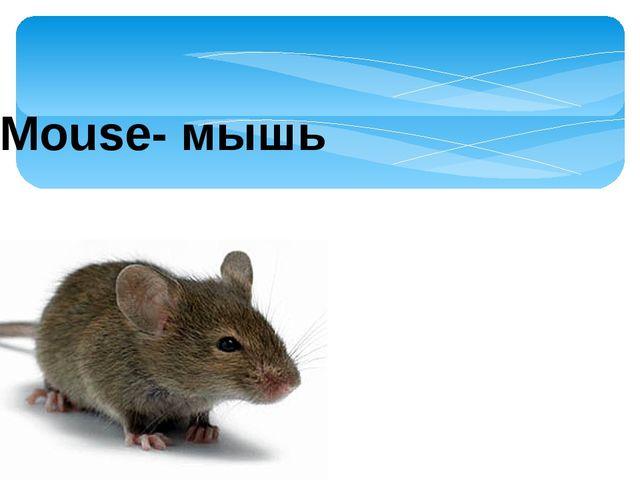 Mouse- мышь