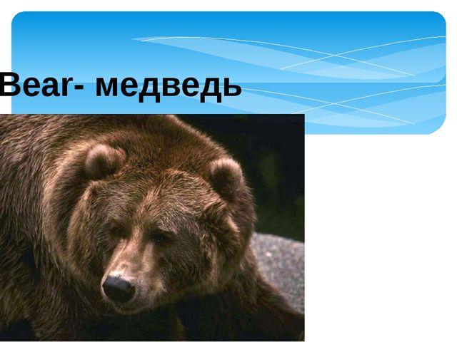 Bear- медведь