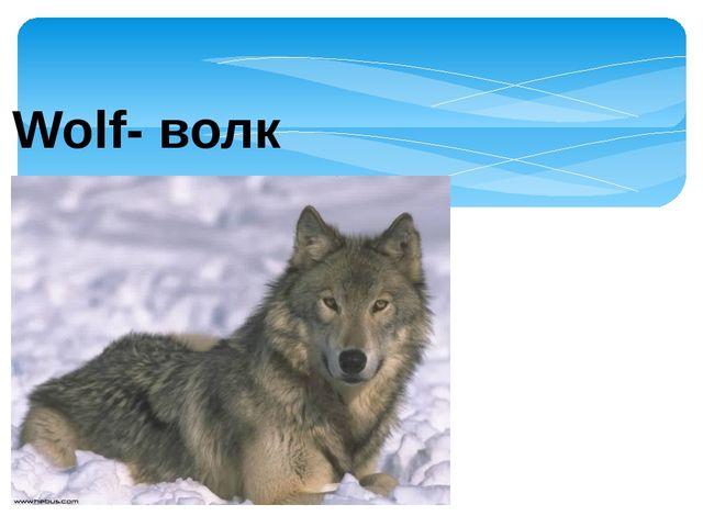 Wolf- волк