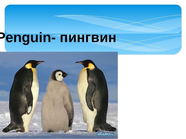 Penguin- пингвин