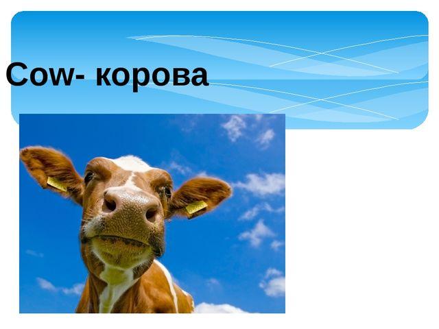 Cow- корова