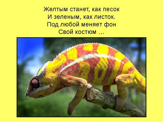Желтым станет, как песок И зеленым, как листок. Под любой меняет фон Свой кос...