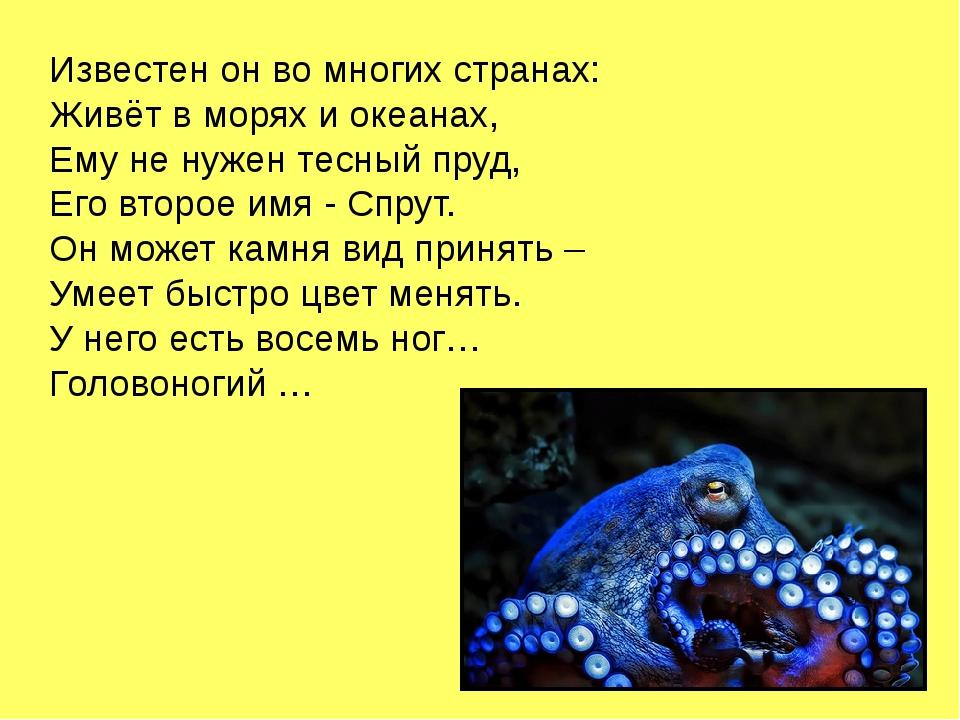 Известен он во многих странах: Живёт в морях и океанах, Ему не нужен тесный п...