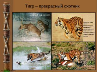 Тигр – прекрасный охотник FokinaLida.75@mail.ru