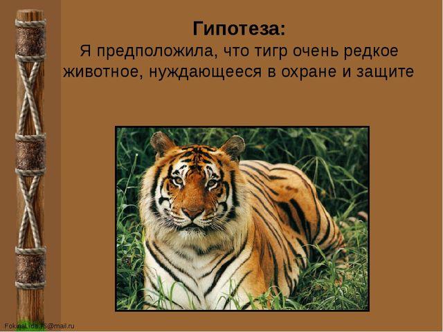 Гипотеза: Я предположила, что тигр очень редкое животное, нуждающееся в охран...