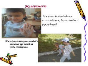 Эксперимент Мы начали проводить исследования, беря смывы с рук у детей. Мы с