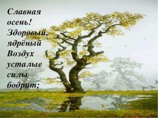 Писаревская Т.П. БСОШ Баган Славная осень! Здоровый, ядрёный Воздух усталые с