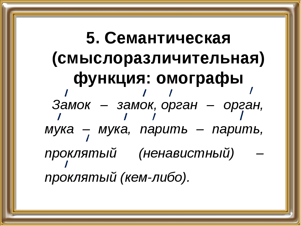 5. Семантическая (смыслоразличительная) функция: омографы Замок – замок,орга...