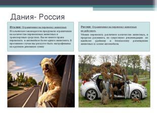 Дания- Россия Италия: Ограничение на перевозку животных Итальянские законодат