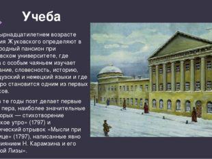 Учеба В четырнадцатилетнем возрасте Василия Жуковского определяют в Благородн