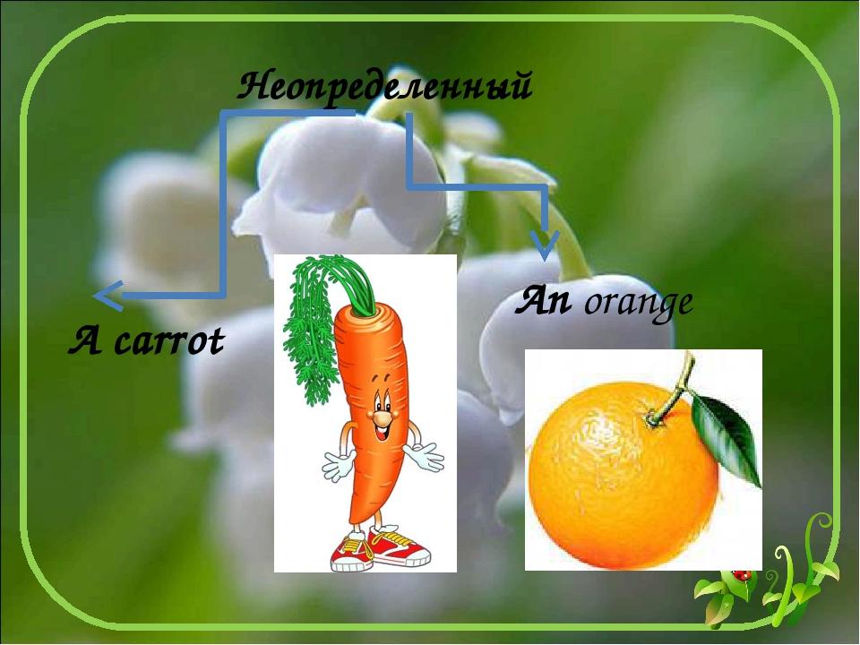 An orange Неопределенный A carrot