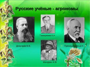 Русские учёные - агрономы Докучаев В.В. Прянишников Д.Н. Тимирязев К.А. Мичур