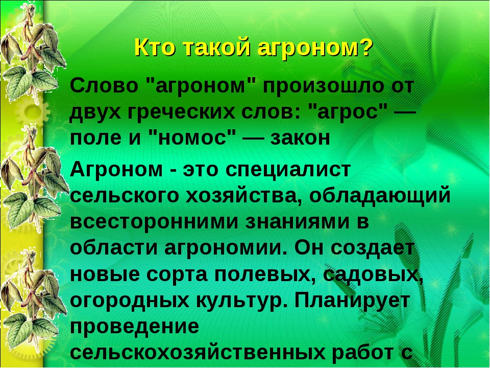 """Кто такой агроном? Слово """"агроном"""" произошло от двух греческих слов: """"агрос""""..."""