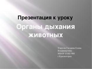 Органы дыхания животных Презентация к уроку Учитель Гвоздева Елена Владимиров