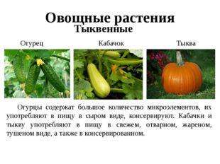 Овощные растения Тыквенные Огурец Тыква Кабачок Огурцы содержат большое коли