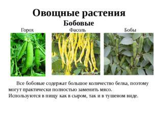 Овощные растения Бобовые Горох Фасоль Бобы Все бобовые содержат большое коли