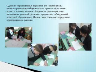 Одним из перспективных вариантов для нашей школы является реализация общешкол