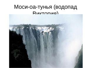 Моси-оа-тунья (водопад Виктория)