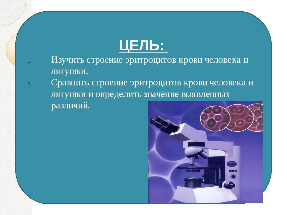 ЦЕЛЬ: Изучить строение эритроцитов крови человека и лягушки. Сравнить строен...