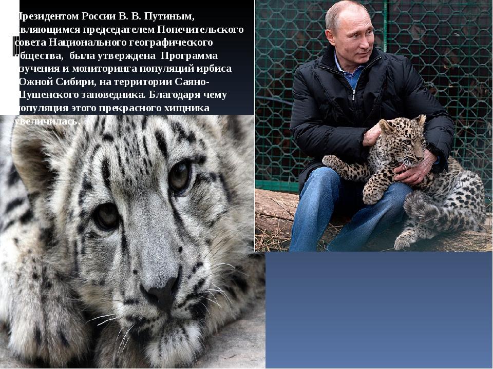 Президентом России В. В. Путиным, являющимся председателем Попечительского со...