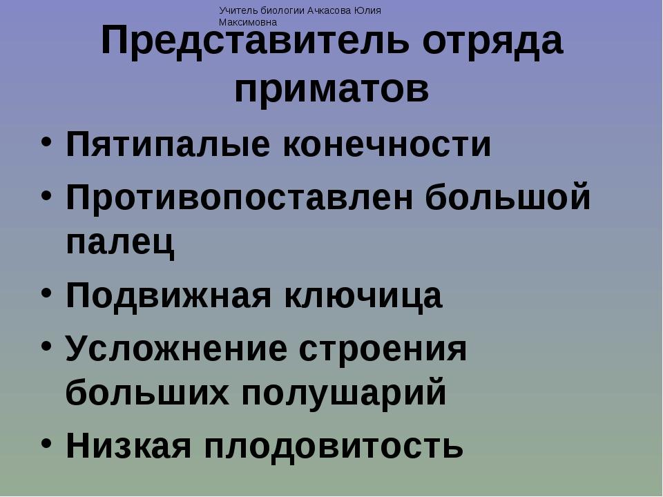 Представитель отряда приматов Пятипалые конечности Противопоставлен большой п...