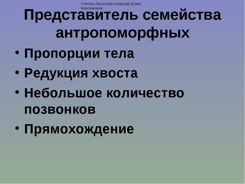 Представитель семейства антропоморфных Пропорции тела Редукция хвоста Небольш...