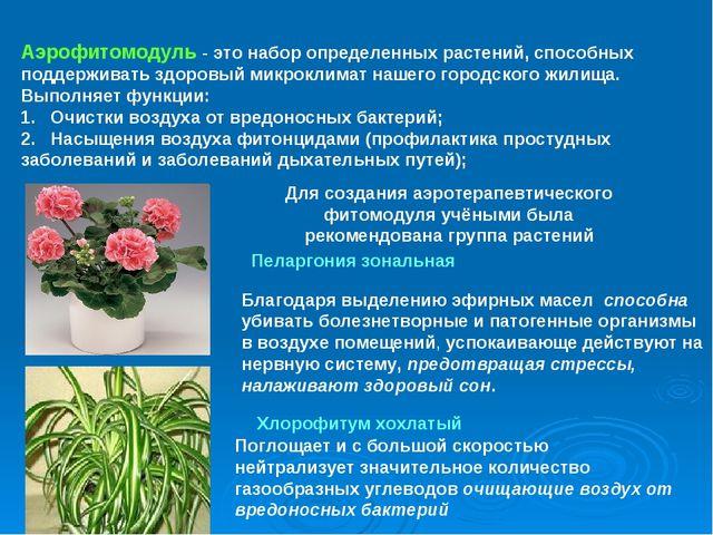Аэрофитомодуль - это набор определенных растений, способных поддерживать здор...