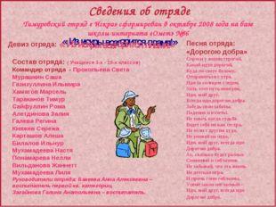 Тимуровский отряд « Искра» сформирован в октябре 2008 года на базе школы-инте