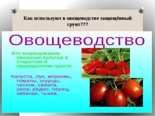 Как используют в овощеводстве защищённый грунт???